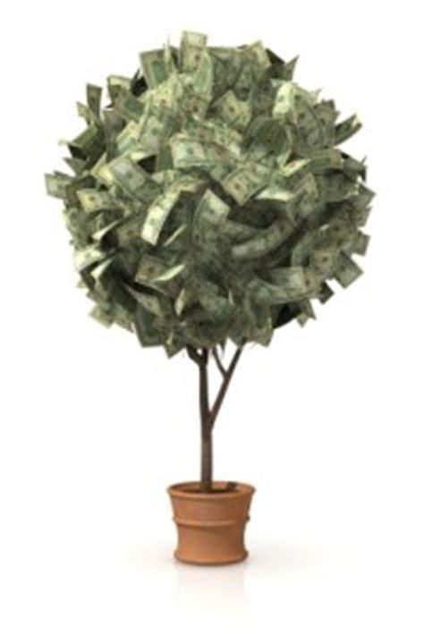 how to start a profitable backyard plant nursery pdf how to start a backyard plant nursery for 400 profitable plants