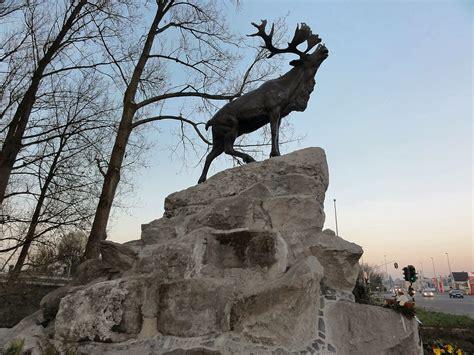 Memorial Of Newfoundland Canada Mba by Courtrai Newfoundland Memorial