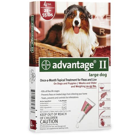 advantage for dogs 55 lbs 4 month advantage ii flea large for dogs 21 55 lbs