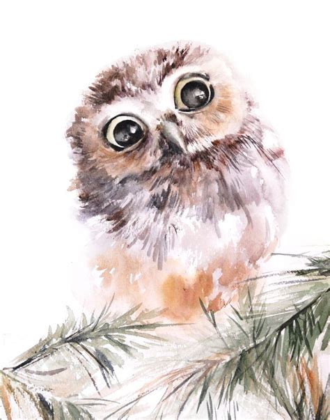 25 best ideas about owl watercolor on owl illustration wolf drawings and
