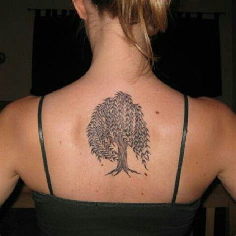 willow tree tattoo designs 25 best willow tree tattoos ideas on