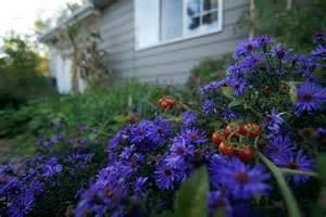 Planting A Flower Garden Grow Veggies In Your Flower Garden Absolutely