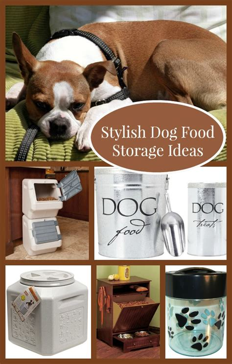 food storage ideas stylish food storage ideas for your home