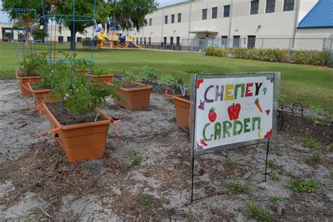 winter garden family health center cheney elementary s school garden is growing strong