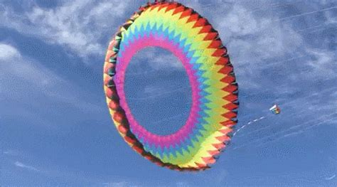 gif format for twitter cool kite gif find share on giphy