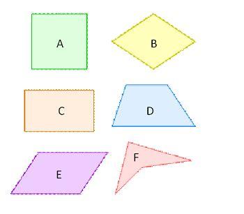 sided polygons video lesson transcript studycom