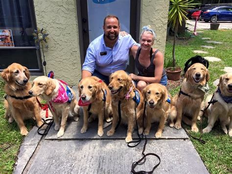 Pet Comfort by Golden Retrievers Deployed To Orlando To Comfort Shooting