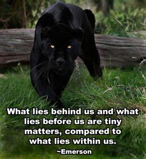 black panther quotes quotesgram