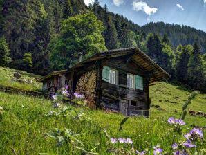 Hütte Mieten Schweiz 2 Personen by Bergh 252 Tten In Der Schweiz Mieten Urlaub In Der Schweiz