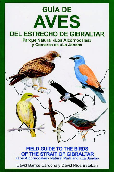 gua de aves field guide to the birds of the strait of gibraltar guia de aves del estrecho de gibraltas