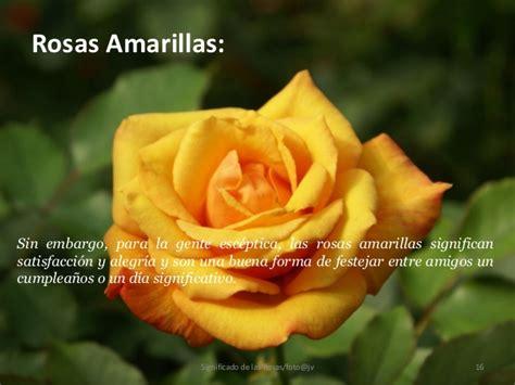 imagenes flores amarillas con frases significado de las rosas