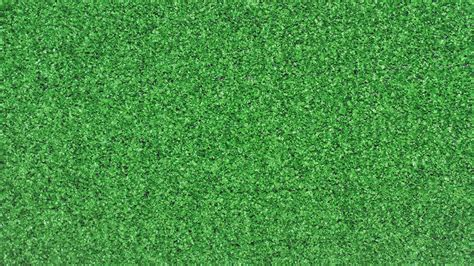 Green Carpet Green Carpet Plants Encyclopedia