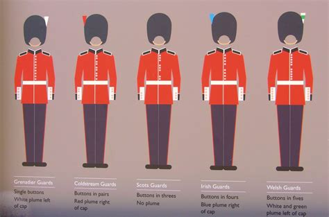 how to a to be a guard s grenadier guard is visited at his post by his holding h