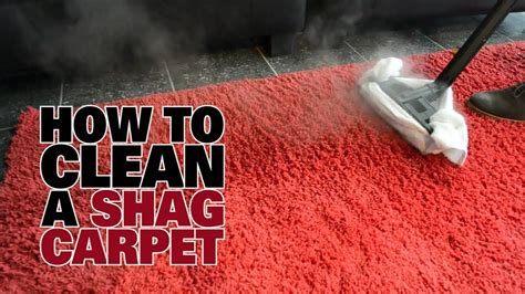 how to clean in how to steam clean a shag carpet dupray