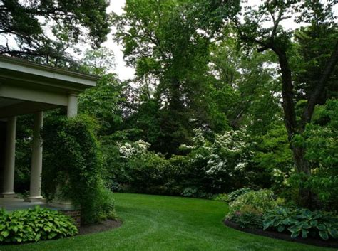 backyard shrubs privacy 30 wonderful backyard landscaping ideas