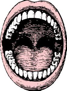 open mouth clip art  vector vector