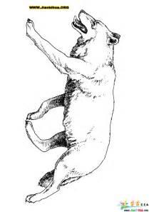 动物素描简笔画图片 10张
