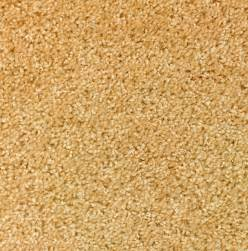 vorwerk teppich berlin hochwertige baustoffe teppichboden berlin kaufen