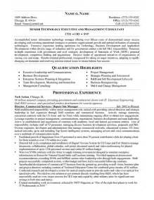 Technical Resume Summary Examples Cto Resume Example