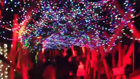 la lights twinkle tunnel la zoo lights 2014