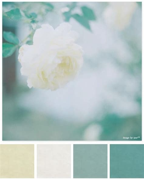 soothing blue color calming color palette for the home pinterest