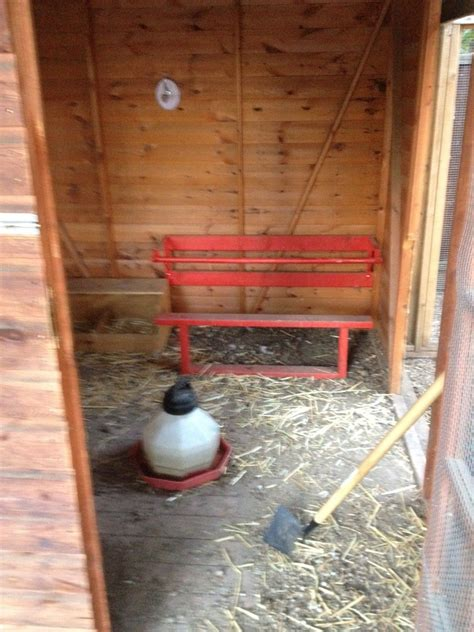 interior layout of a chicken coop help with chicken coop interior backyard chickens