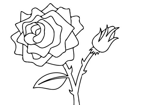 coloring page flower bud free printable roses coloring pages for kids