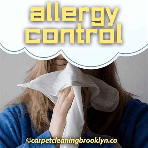 upholstery cleaning brooklyn allergy control treatment