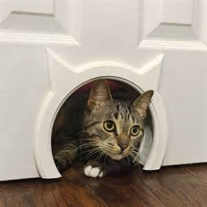 interior cat door kitty pass interior cat door the green head