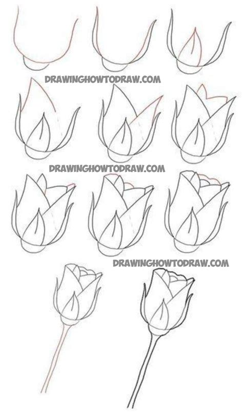 how to draw doodle roses how to draw stem roses drawing tutorial for