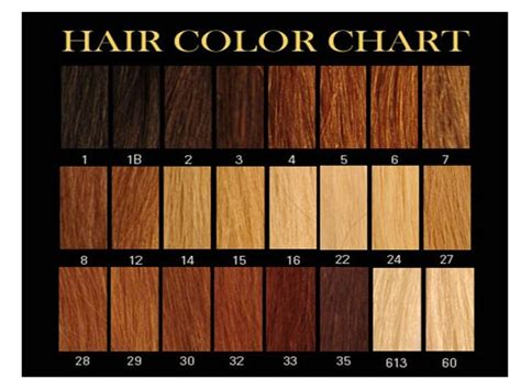 show color swatches for dyeing brunette hair honey brown hair color chart google search hair ideas