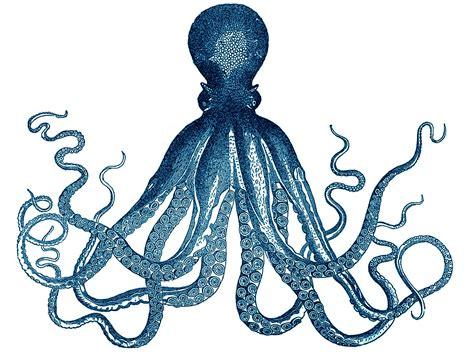 printable octopus art splendid minta get the look octopus triptych