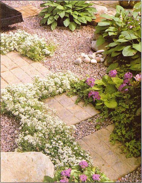 plants between patio paving