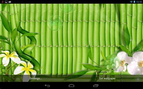 Wallpaper Sticker Dinding Hijau Muda Garis Krem gambar wallpaper 3d warna hijau gambar dp bbm