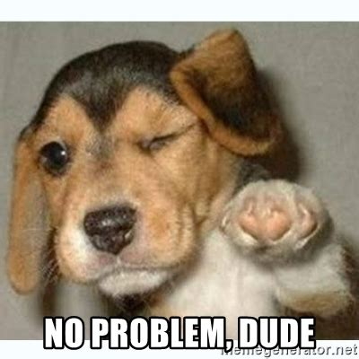 No Problem Meme - no problem dude fist bump puppy meme generator
