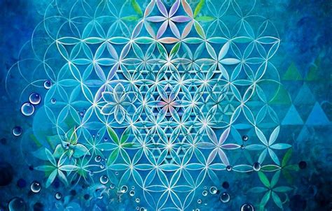 pattern universe com the secret to how the universe works lies within this