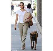 Eva Mendes Keeps Her Guard Dog Hugo Close But The Excitable Canine May