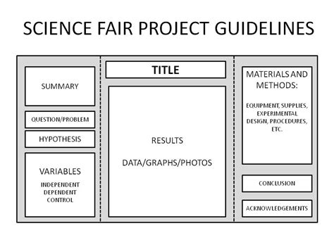 science fair project template backboard basics for science fair projects science fair