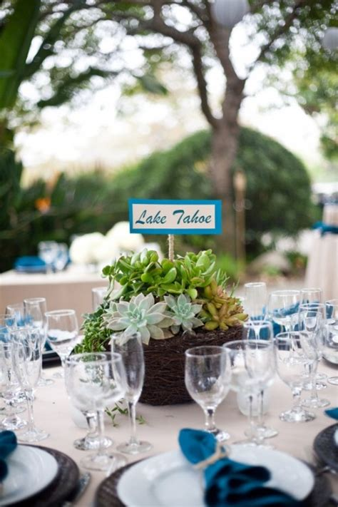 succulent centerpieces   reception table