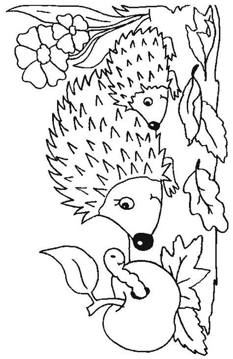 autumn animals coloring page kleurplaat kleurplaat egel 4 11087 kleurplaten