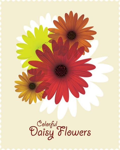 foto fiori coloratissimi coloratissimi fiori margherita scaricare vettori gratis