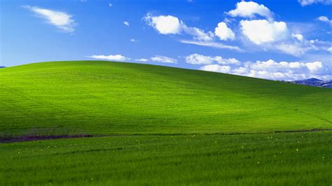 windows xp wallpaper the most famous windows wallpaper ever turns 20