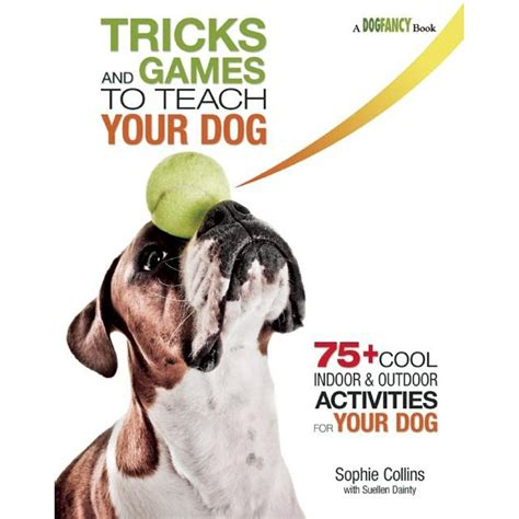 tricks to teach your puppy tricks and to teach your 75 cool activities to bring out your s inner