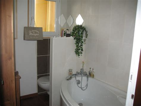 Separation De Baignoire by Stunning Separation Baignoire Wc Pictures Awesome