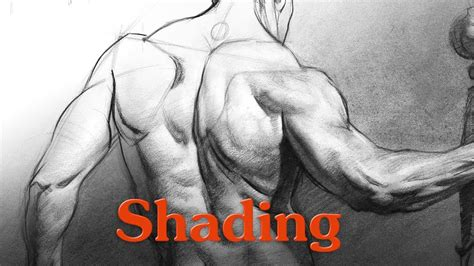 how to a lshade how to shade a drawing