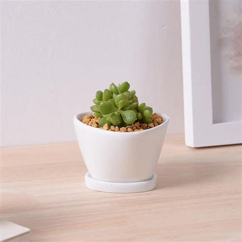 white planter pots indoor small white ceramic plant pots crafts desktop white