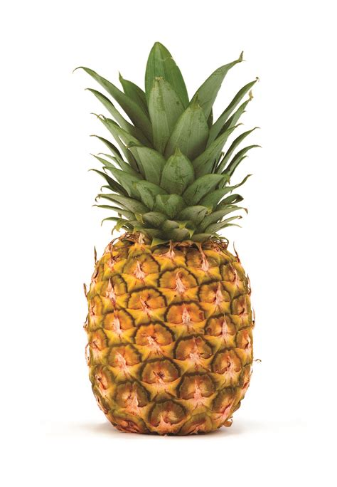 Pineapple Fruit pineapple free images at clker vector clip