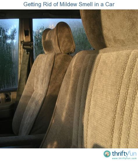 how to get rid of mold in car upholstery getting rid of mildew smell in a car cars and tips