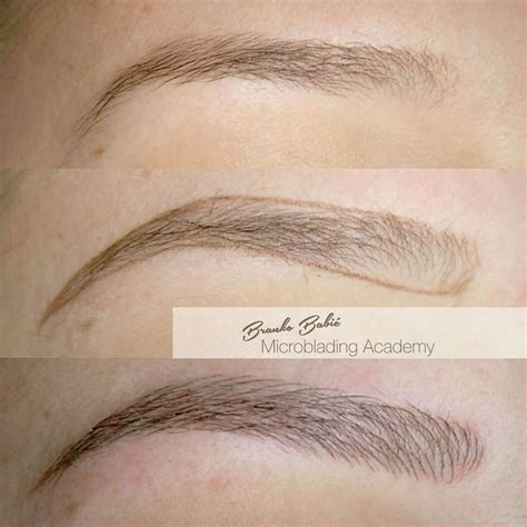 tattoo eyebrows blonde hair 68 best microblading images on pinterest brows creative