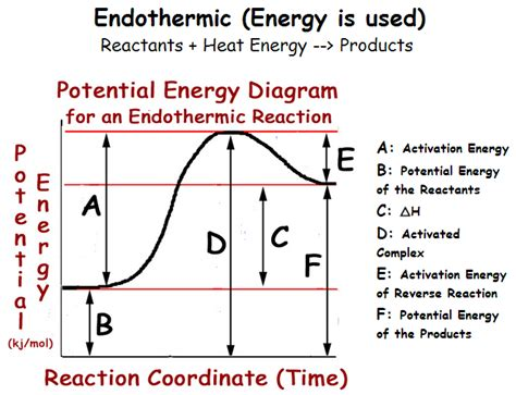 potential energy diagram worksheet potential energy diagram worksheet pdf